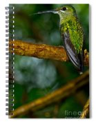 Green-crowned Brilliant Hummingbird Spiral Notebook