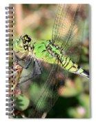 Green Dragonfly Macro Spiral Notebook