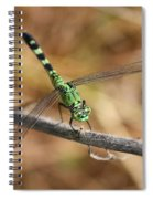 Green Dragonfly On Twig Spiral Notebook