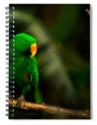Green Eclectus Parrot Male Spiral Notebook