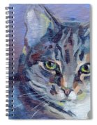 Green Eyed Tabby - Thomasina Spiral Notebook