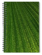 Green Fan - Radiating Lines And Scattered Polka-dots Spiral Notebook
