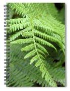 Green Fern 2 Spiral Notebook