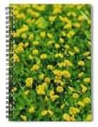 Green Field Of Yellow Flowers 1 Spiral Notebook