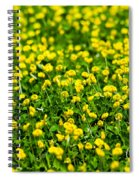 Green Field Of Yellow Flowers 2 1 Spiral Notebook