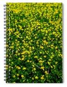 Green Field Of Yellow Flowers 3 Spiral Notebook