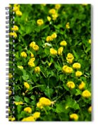 Green Field Of Yellow Flowers 4 Spiral Notebook
