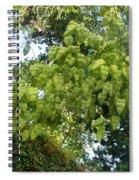 Green Fizalis Plant Spiral Notebook