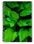 Green Foliage Spiral Notebook
