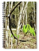 Green Foliage Forest Spiral Notebook