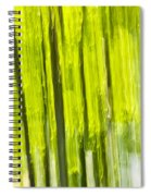 Green Forest Abstract Spiral Notebook