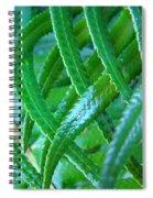 Green Forest Fern Fronds Art Prints Baslee Troutman Spiral Notebook