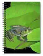 Green Frog Spiral Notebook