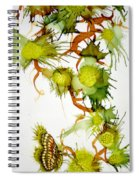 Green Fruit And Butterfly Spiral Notebook