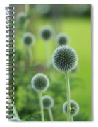 Green Globe Thistles Spiral Notebook