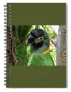Green Goddess Spiral Notebook