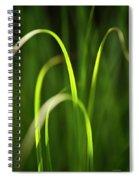 Green Grass Spiral Notebook