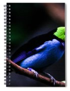 Green Headed Bird Spiral Notebook