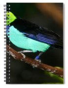 Green Headed Bird On Branch Spiral Notebook