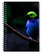 Green Headed Bird Profile Spiral Notebook
