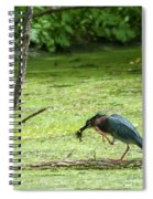 Green Heron Lunch Spiral Notebook