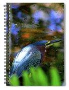 Green Heron  Spiral Notebook