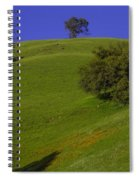 Green Hill With Poppies Spiral Notebook