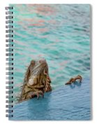 Green Iguana Peering Over Wall Spiral Notebook