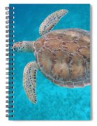 Green In Blue Spiral Notebook