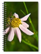 Green Iridescent Bee Spiral Notebook