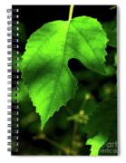 Green Is The Mulberry Leaf Spiral Notebook