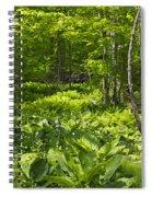 Green Landscape Of Summer Foliage Spiral Notebook