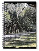 Green Lane With Live Oaks - Black Framing Spiral Notebook
