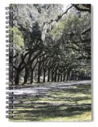 Green Lane With Live Oaks Spiral Notebook