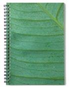 Green Leaf 2 Spiral Notebook