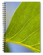 Green Leaf Backlit  Spiral Notebook
