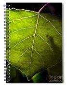 Green Leaf Detail Spiral Notebook
