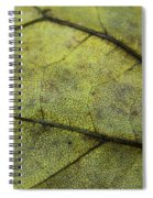 Green Leaf Spiral Notebook