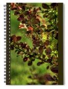 Green Leaf Spotlight Spiral Notebook