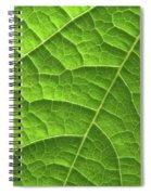 Green Leaf Structure Spiral Notebook