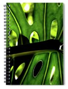 Green Leave With Holes Spiral Notebook