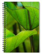 Green Leaves At Cantigny Spiral Notebook