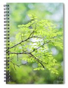 Green Leaves In The Forest Spiral Notebook