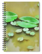 Green Lotus Leaf In The Lake Spiral Notebook
