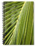 Green Palm Leaf Spiral Notebook