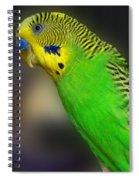 Green Parakeet Portrait Spiral Notebook