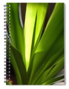 Green Patterns Spiral Notebook