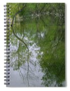 Green Peace - Trees Reflection Spiral Notebook
