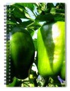 Green Peppers Spiral Notebook