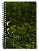 Green Poison Dart Frog Spiral Notebook